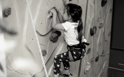 Should you get a climbing wall?
