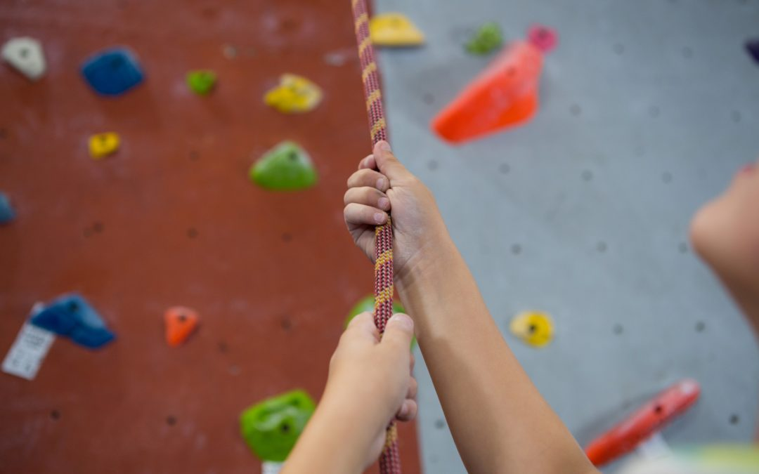 Auto Belay Servicing. How to Ensure Your Customers Have a Safe Climb